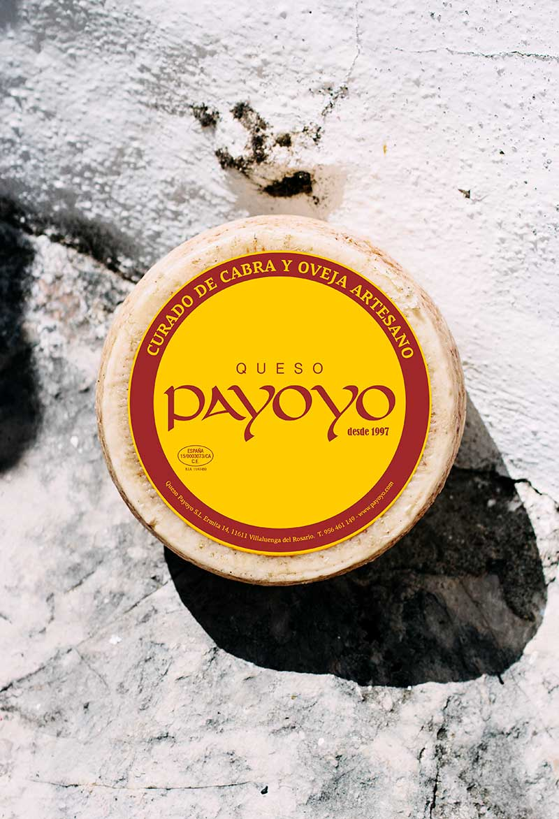 etiqueta queso Payoyo